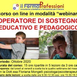 WEBINAR OPERATORE DI SOSTEGNO EDUCATIVO E PEDAGOGICO